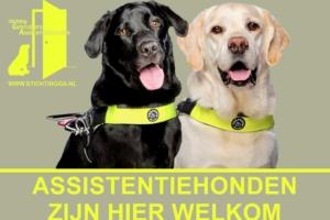 Sticker 'ASSISTENTIEHONDEN ZIJN HIER WELKOM'